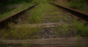 Abandoned Railroad Tracks Stock Images
