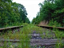 Abandoned Railroad Tracks Stock Image