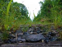 Abandoned Railroad Tracks Royalty Free Stock Photography