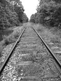 Abandoned Railroad Tracks. Between Tuckahoe and Woodbine, Cape May County, New Jersey royalty free stock images