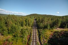 Abandoned railway in the forest. View in perspective. stock photography