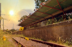 Abandoned railway station at sunset Royalty Free Stock Photography