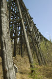 Abandoned Railway Tressel. An old, abandoned railway tressel with undergrowth Stock Image