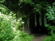 Abandoned railway tunnel stock photos