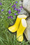 Abandoned rain boots Royalty Free Stock Photography