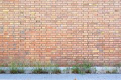 Abandoned red brick wall with some plants and sidewalk as a street background. Empty copy space for Editor`s text Royalty Free Stock Images