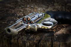 Abandoned revolver Royalty Free Stock Image