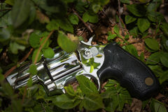 Abandoned revolver Royalty Free Stock Photos