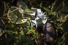 Abandoned revolver Stock Photography