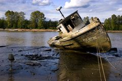 Abandoned Riverboat. An abandoned, vandalized, rotting fishing boat on the muddy banks of a low river stock images