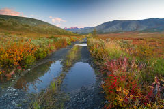 Abandoned road. A deserted road in the autumn tundra Royalty Free Stock Image