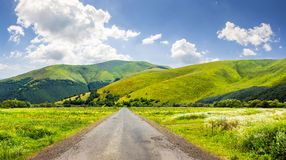 Abandoned road through meadows in mountain. Composite landscape with abandoned asphalt road rolls through meadows with flowers going to high  mountains Stock Image