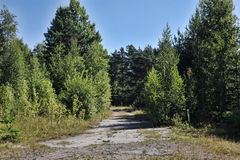 Abandoned road in the suburb Stock Photography