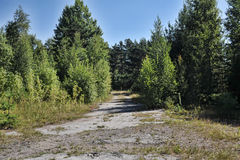 Abandoned road in the suburb Royalty Free Stock Image