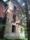 Abandoned ruinded huset i en skog Royaltyfri Foto