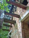 Abandoned ruinded huset i en skog Arkivbild