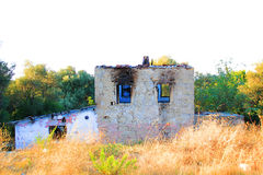 Abandoned And Ruined House. With Yellow Brushes Stock Photo