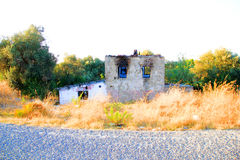 Abandoned And Ruined House. With Yellow Brushes Stock Photography