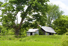 Abandoned, Run-Down Shed. An abandoned shed sits neglected amidst the overgrowth of the Ottawa Valley country side stock images