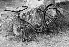 Abandoned rusty bicycle. Stock Photography