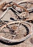 Abandoned Rusty Bike Stock Image
