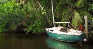 Abandoned Sailboat on Jungle River Royalty Free Stock Photo