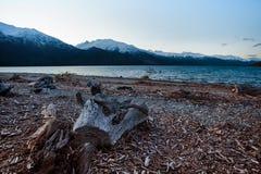 Abandoned scene of lake wanaka southland new zealand Royalty Free Stock Photography
