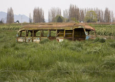 Abandoned School Bus stock photography