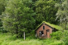 Abandoned shack in a small forest near Kirkjubaejarklaustur. Iceland royalty free stock photography