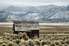Abandoned Shack in Utah Stock Photography