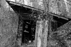 Abandoned shed in forest - black and white stock photos