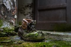Abandoned shoe with moss Royalty Free Stock Image