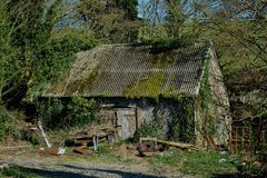 Abandoned old dilapidated barn & wood pile. An abandoned small barn with corrugated roof, overgrown vegetation, a pile of wood and various pieces of rusting stock photo