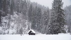 Abandoned Small Wood House Under Snowfall. In the Winter Mountains stock footage