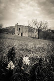 Abandoned spökade huset Arkivfoto