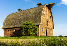 Abandoned stable on farmer field adge Stock Photos