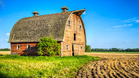 Abandoned stable on farmer field edge Royalty Free Stock Image