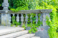 Abandoned staircase. Ancient architecture overgrown with plants Stock Photo
