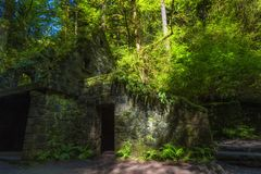 Abandoned Stone Structure covered with plants Royalty Free Stock Photos