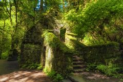 Abandoned Stone Structure covered with plants Royalty Free Stock Images