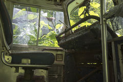 Abandoned street car in overgrown weeds Stock Photography