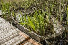 Abandoned sunken overgrown rowboat Royalty Free Stock Photos