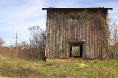 Abandoned tobacco farm Stock Photos
