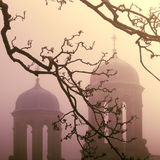 Abandoned Towers In The Fog. Branches in Front of Spooky Towers at Sunset Stock Photo