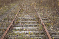 Abandoned Tracks Stock Images