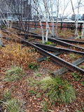 Abandoned Tracks Running Through High Line Park in New York City Stock Images