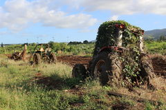 Abandoned Tractor. An old tractor overgrown with weeds and plants abandoned on field. Picture was taken in Hawaii Stock Photography