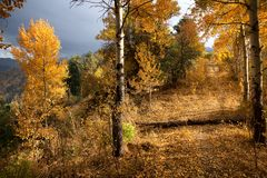 Abandoned trail in autumn mountains Stock Photography