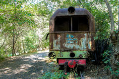 Abandoned train in green forest. Stock Image