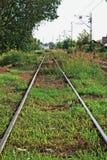 Abandoned Train Tracks Royalty Free Stock Photo